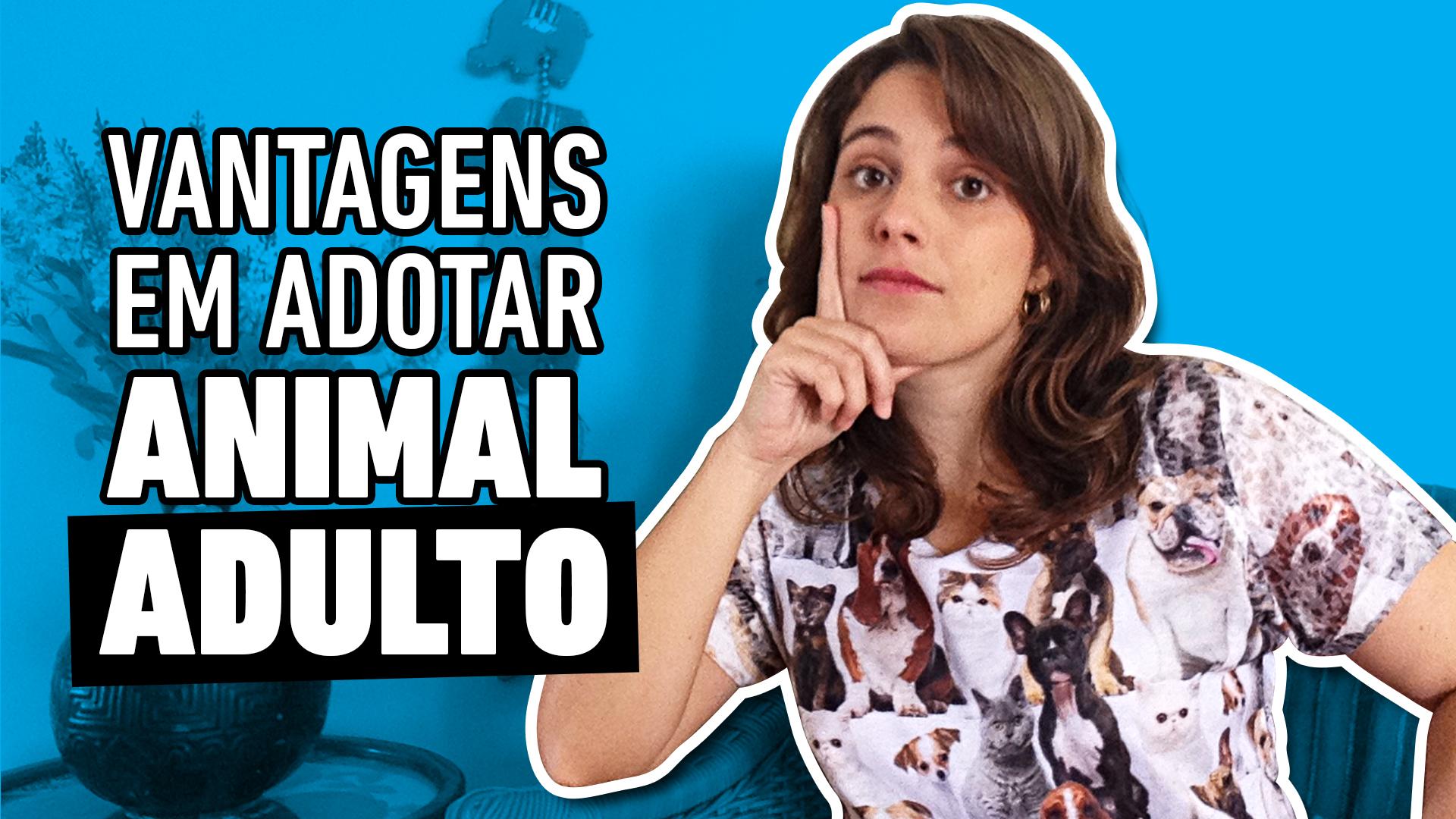 002_AUNIMAL_MATERIAIS_DE_YOUTUBE_ITEM02_CAPA_ADOTAR_ANIMAL_ADULTO
